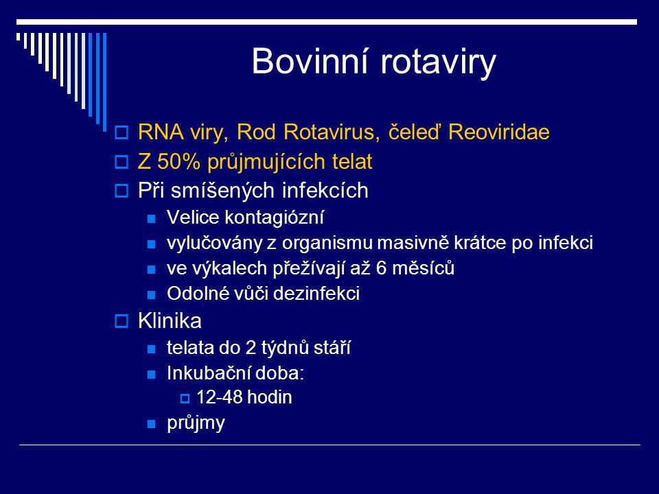 Bovinní rotaviry  RNA viry, Rod Rotavirus, čeleď Reoviridae  Z 50% průjmujících telat  Při smíšených infekcích Velice kontagiózní vylučovány z orga