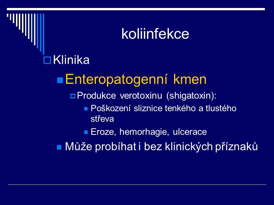koliinfekce  Klinika Enteropatogenní kmen  Produkce verotoxinu (shigatoxin): Poškození sliznice tenkého a tlustého střeva Eroze, hemorhagie, ulcerac