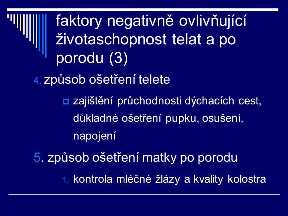 faktory negativně ovlivňující životaschopnost telat a po porodu (3) 4. způsob ošetření telete  zajištění průchodnosti dýchacích cest, důkladné ošetře