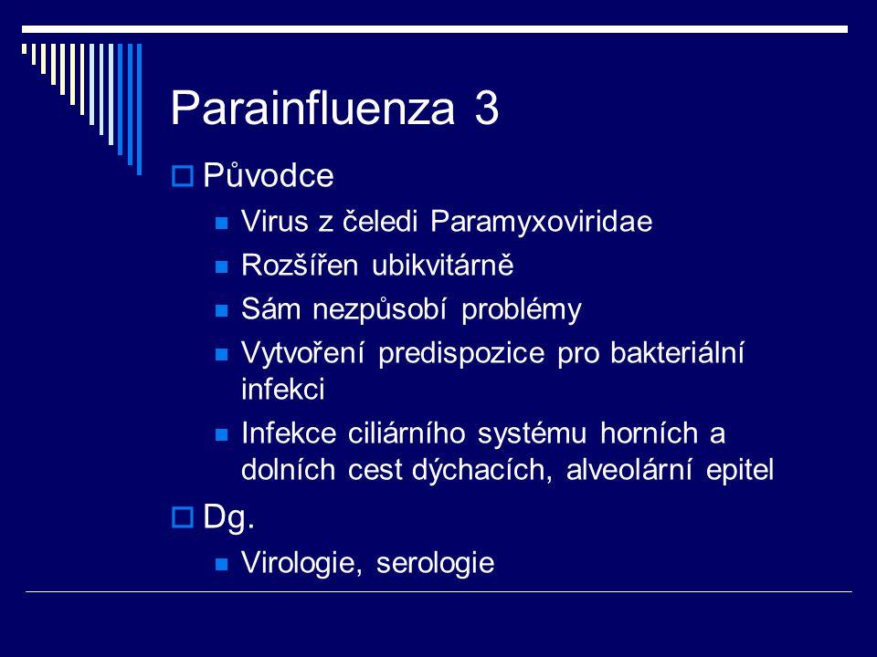 Parainfluenza 3  Původce Virus z čeledi Paramyxoviridae Rozšířen ubikvitárně Sám nezpůsobí problémy Vytvoření predispozice pro bakteriální infekci In
