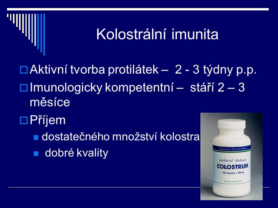 Kolostrální imunita  Aktivní tvorba protilátek – 2 - 3 týdny p.p.  Imunologicky kompetentní – stáří 2 – 3 měsíce  Příjem dostatečného množství kolo
