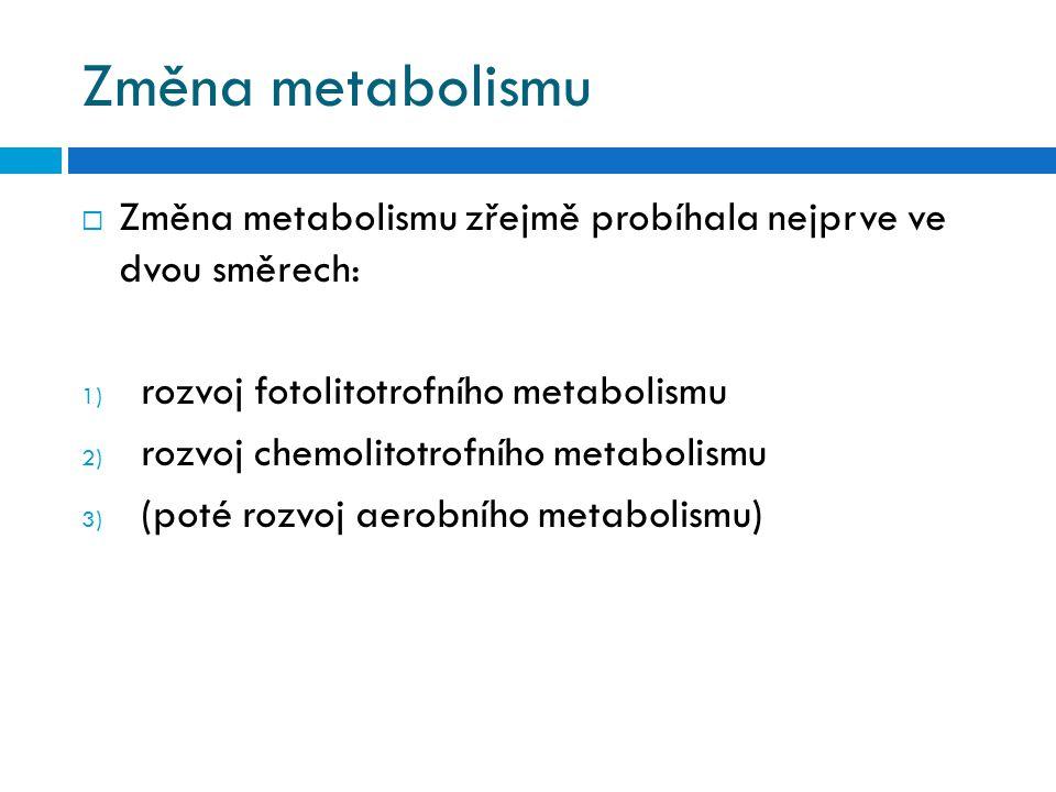 Změna metabolismu  Změna metabolismu zřejmě probíhala nejprve ve dvou směrech: 1) rozvoj fotolitotrofního metabolismu 2) rozvoj chemolitotrofního met