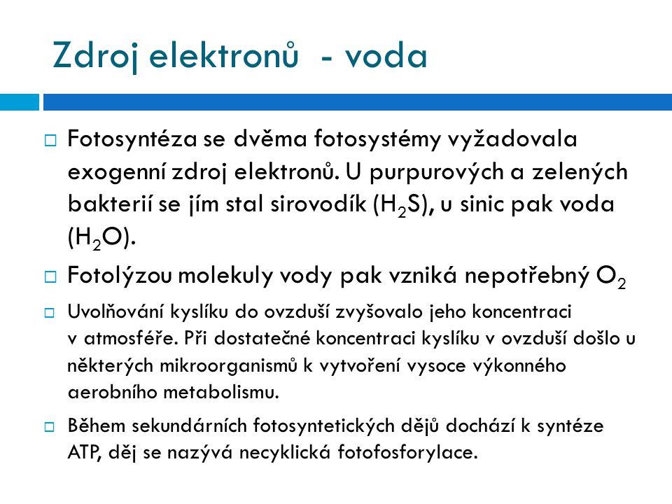 Zdroj elektronů - voda  Fotosyntéza se dvěma fotosystémy vyžadovala exogenní zdroj elektronů. U purpurových a zelených bakterií se jím stal sirovodík