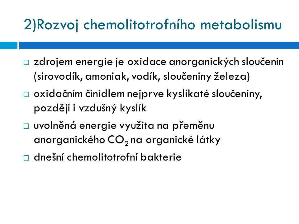 2)Rozvoj chemolitotrofního metabolismu  zdrojem energie je oxidace anorganických sloučenin (sirovodík, amoniak, vodík, sloučeniny železa)  oxidačním