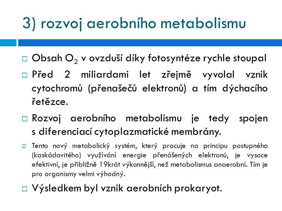 3) rozvoj aerobního metabolismu  Obsah O 2 v ovzduší díky fotosyntéze rychle stoupal  Před 2 miliardami let zřejmě vyvolal vznik cytochromů (přenaše
