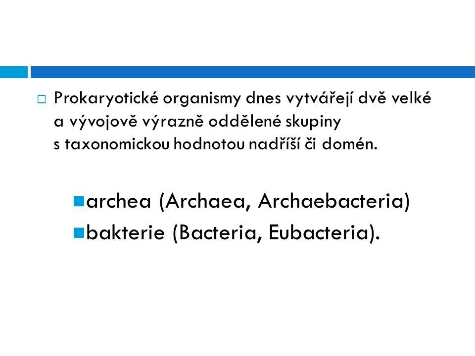  Prokaryotické organismy dnes vytvářejí dvě velké a vývojově výrazně oddělené skupiny s taxonomickou hodnotou nadříší či domén. archea (Archaea, Arch