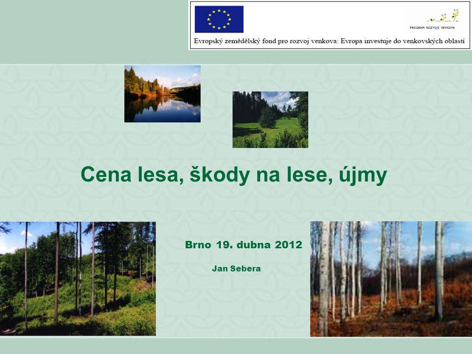 Cena lesa, škody na lese, újmy Brno 19. dubna 2012 Jan Sebera