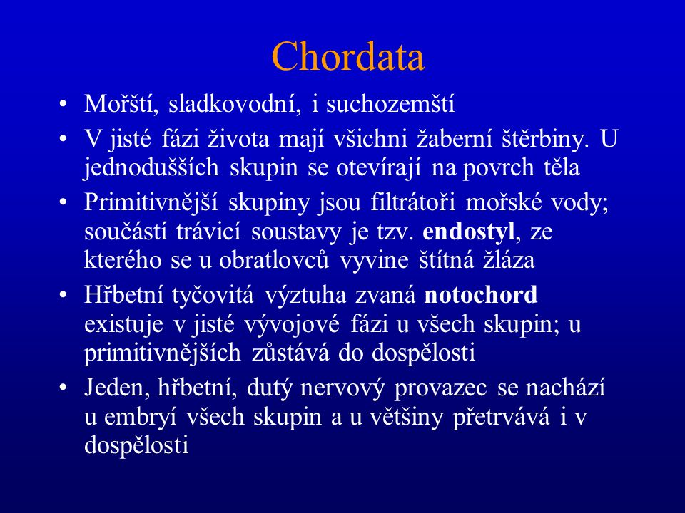 CHORDATA