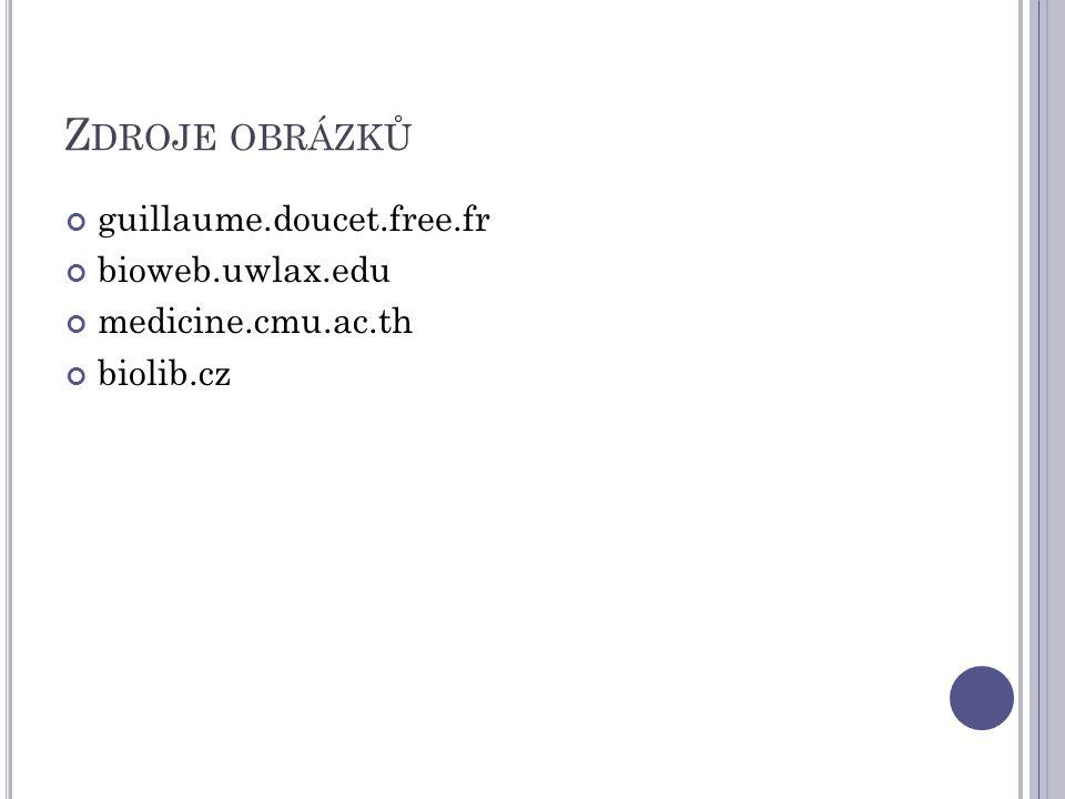 Z DROJE OBRÁZKŮ guillaume.doucet.free.fr bioweb.uwlax.edu medicine.cmu.ac.th biolib.cz