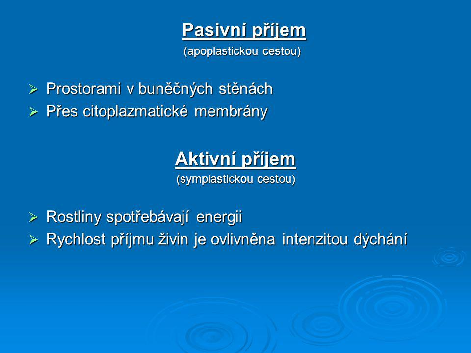 Pasivní příjem Pasivní příjem (apoplastickou cestou) (apoplastickou cestou)  Prostorami v buněčných stěnách  Přes citoplazmatické membrány Aktivní p
