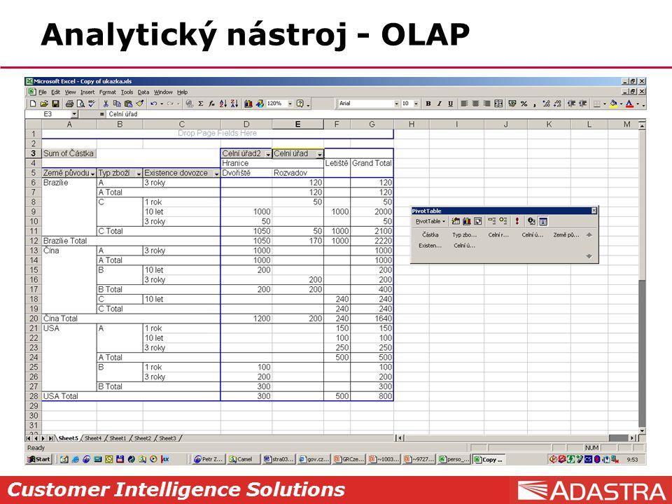 Customer Intelligence Solutions Analytický nástroj - OLAP