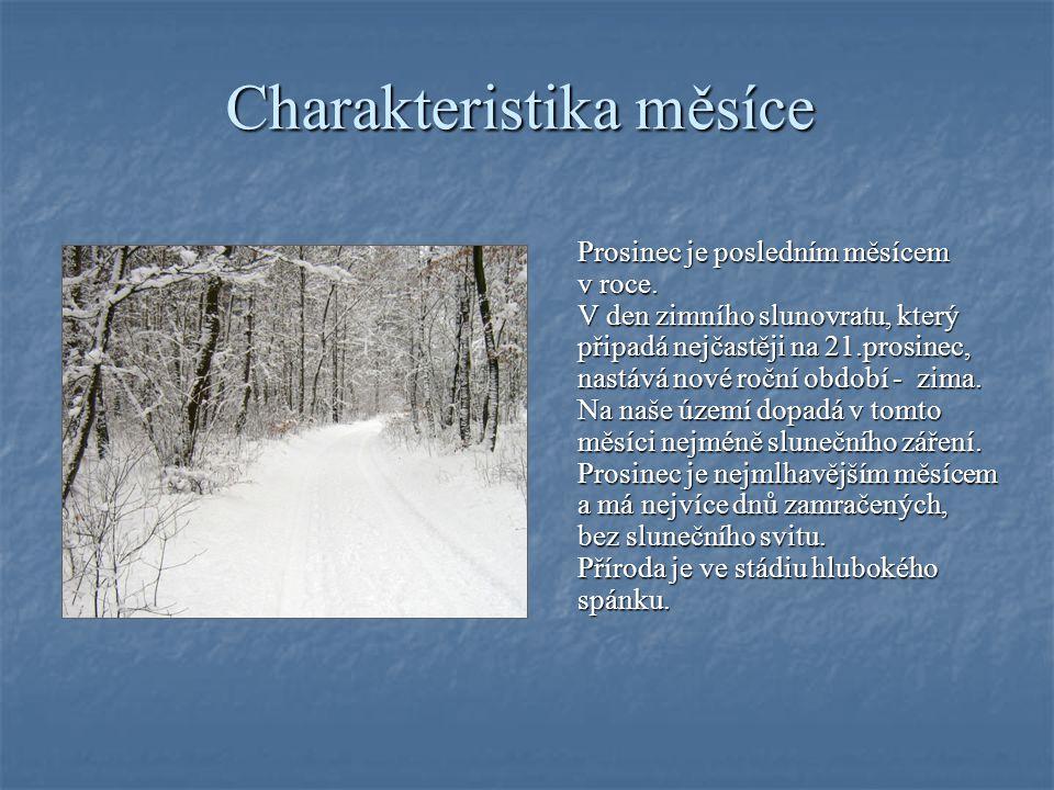 Charakteristika měsíce Prosinec je posledním měsícem Prosinec je posledním měsícem v roce.