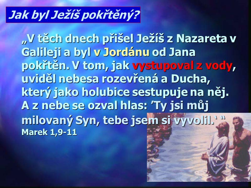 """""""Usilovně hleďte zachovat jednotu Ducha, spojeni svazkem pokoje. Jedno tělo a jeden Duch, k jedné naději jste byli povoláni; jeden je Pán, jedna víra,"""