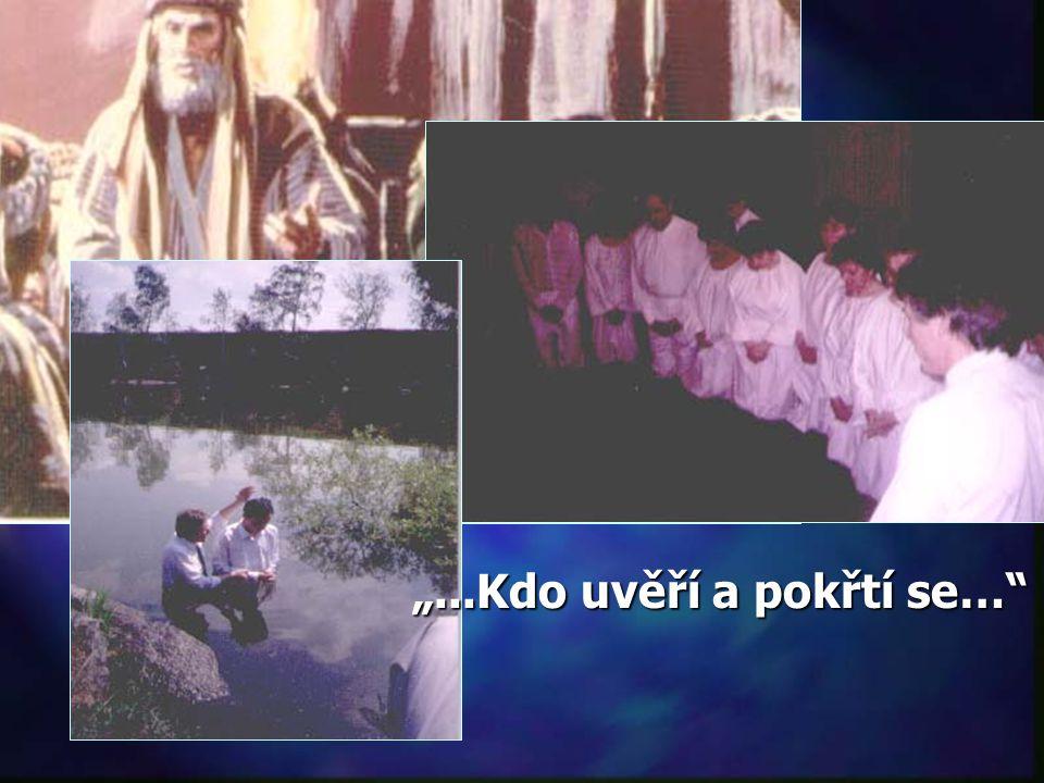 """""""Ale když spatřil, že mnoho farizeů a saduceů přichází ke křtu, řekl jim: 'Neste tedy ovoce, které ukazuje, že činíte pokání.' """" Matouš 3,7.8 = Víra ="""