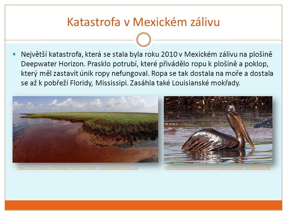 Katastrofa v Mexickém zálivu Největší katastrofa, která se stala byla roku 2010 v Mexickém zálivu na plošině Deepwater Horizon. Prasklo potrubí, které