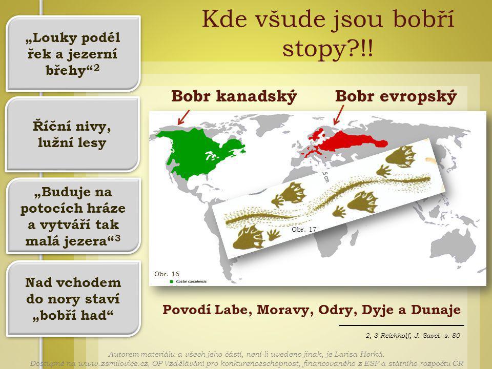 Obr. 16 2, 3 Reichholf, J. Savci. s. 80 Bobr kanadskýBobr evropský Kde všude jsou bobří stopy?!.