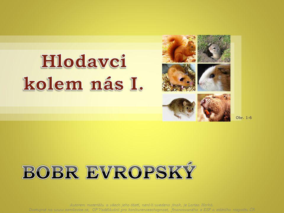 Obr. 1-6 Autorem materiálu a všech jeho částí, není-li uvedeno jinak, je Larisa Horká.
