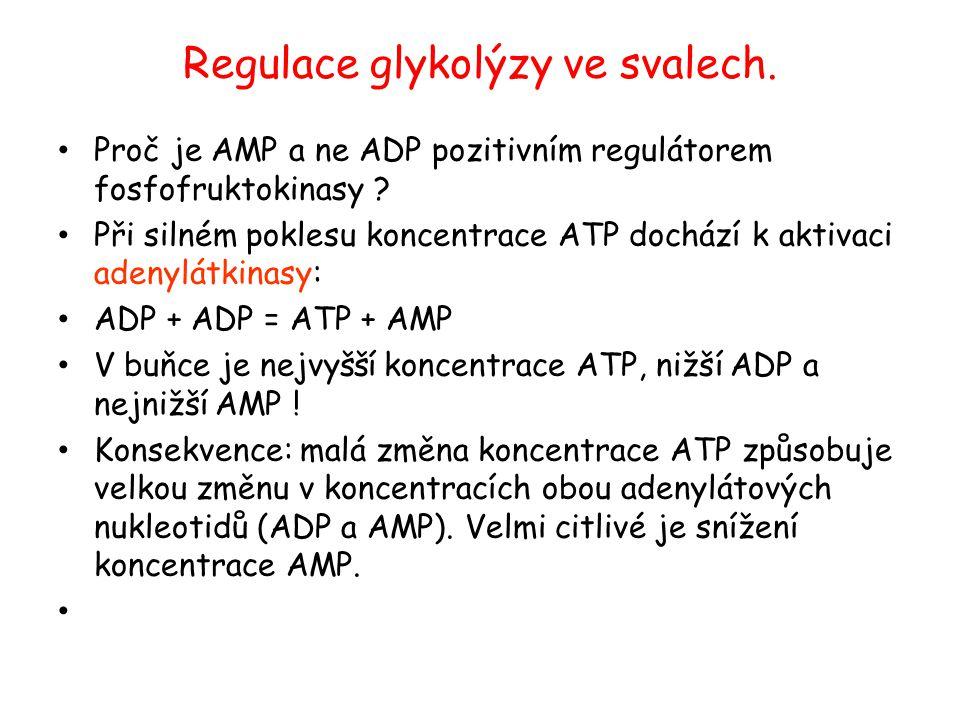 Regulace glykolýzy ve svalech. Proč je AMP a ne ADP pozitivním regulátorem fosfofruktokinasy ? Při silném poklesu koncentrace ATP dochází k aktivaci a