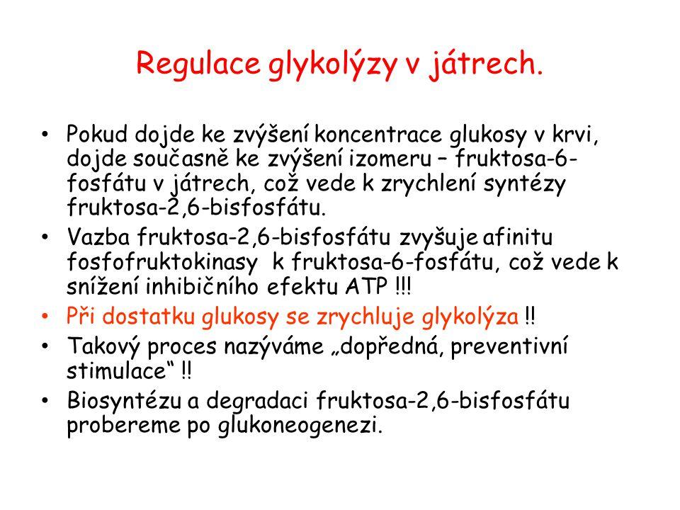 Regulace glykolýzy v játrech. Pokud dojde ke zvýšení koncentrace glukosy v krvi, dojde současně ke zvýšení izomeru – fruktosa-6- fosfátu v játrech, co