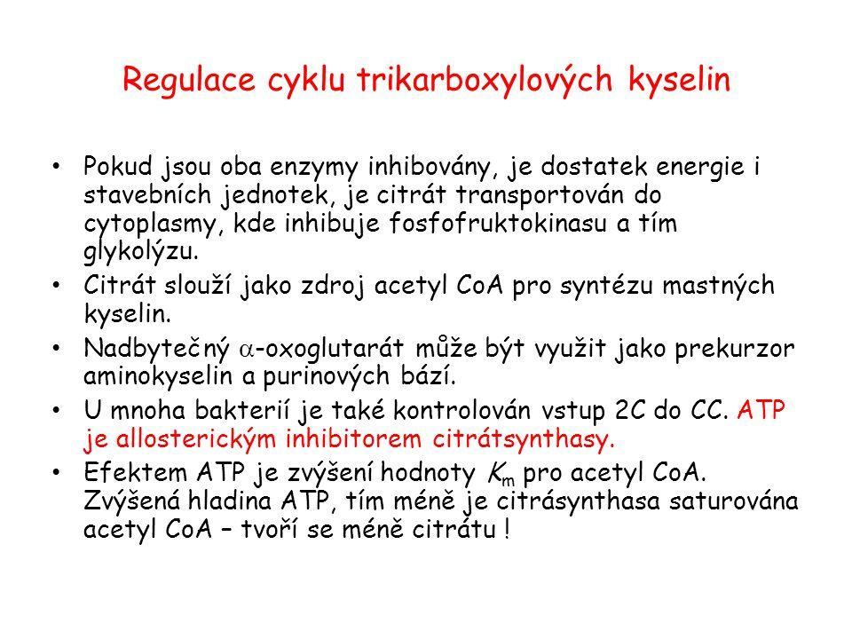 Regulace cyklu trikarboxylových kyselin Pokud jsou oba enzymy inhibovány, je dostatek energie i stavebních jednotek, je citrát transportován do cytopl