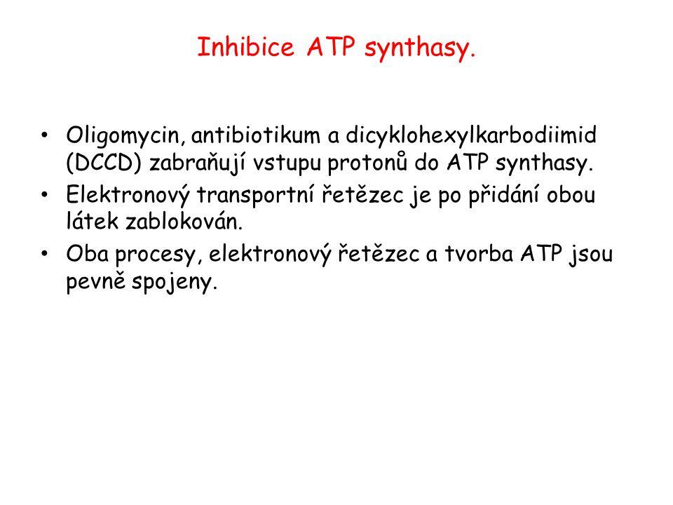 Inhibice ATP synthasy. Oligomycin, antibiotikum a dicyklohexylkarbodiimid (DCCD) zabraňují vstupu protonů do ATP synthasy. Elektronový transportní řet