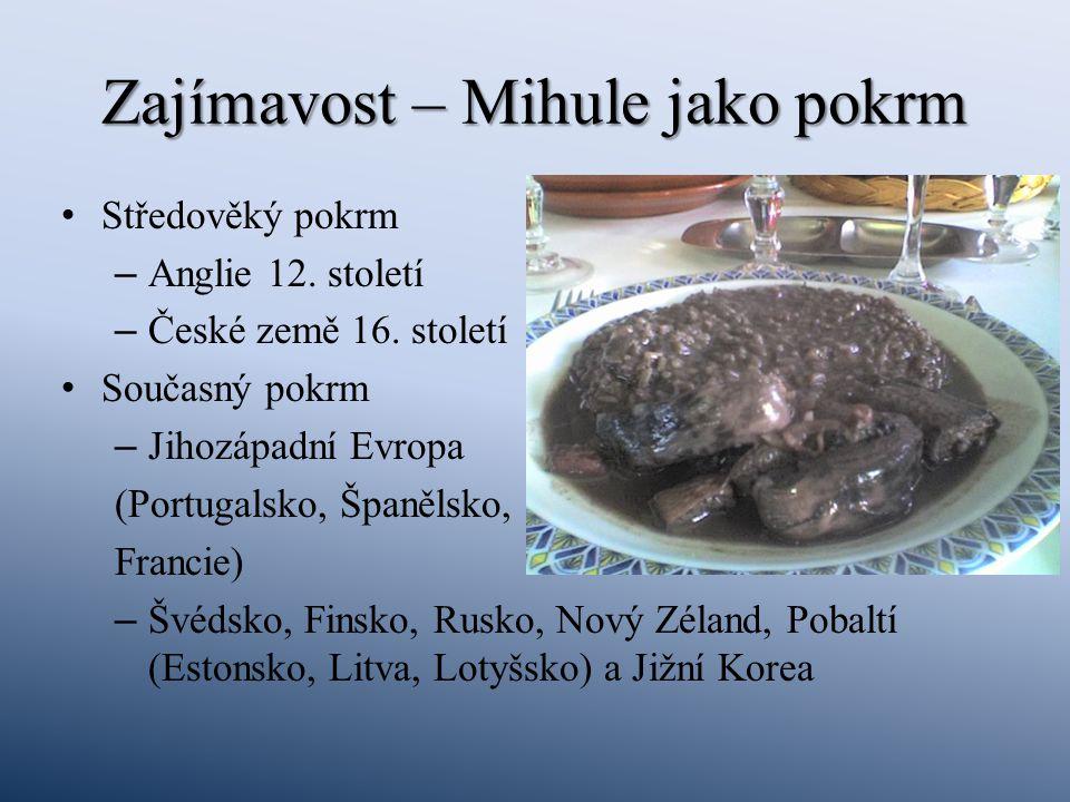 Zajímavost – Mihule jako pokrm Středověký pokrm – Anglie 12. století – České země 16. století Současný pokrm – Jihozápadní Evropa (Portugalsko, Španěl