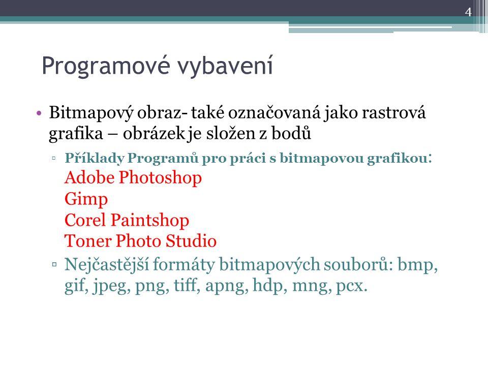 Programové vybavení Bitmapový obraz- také označovaná jako rastrová grafika – obrázek je složen z bodů ▫Příklady Programů pro práci s bitmapovou grafikou : Adobe Photoshop Gimp Corel Paintshop Toner Photo Studio ▫Nejčastější formáty bitmapových souborů: bmp, gif, jpeg, png, tiff, apng, hdp, mng, pcx.