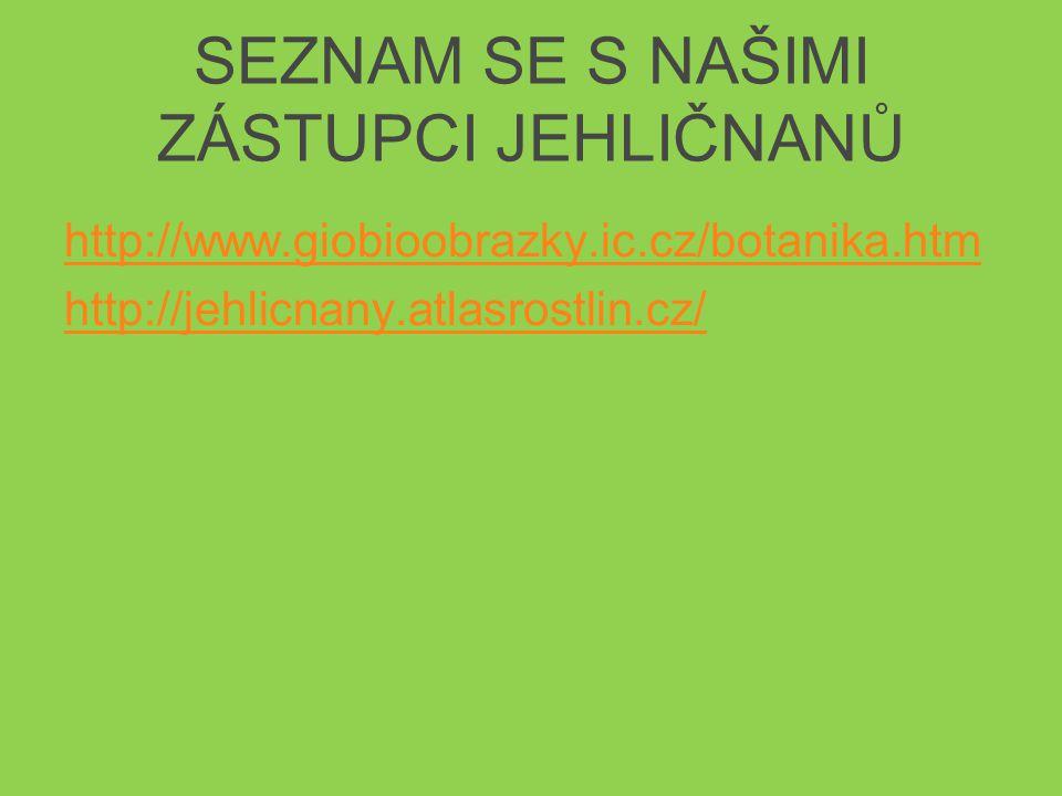 SEZNAM SE S NAŠIMI ZÁSTUPCI JEHLIČNANŮ http://www.giobioobrazky.ic.cz/botanika.htm http://jehlicnany.atlasrostlin.cz/