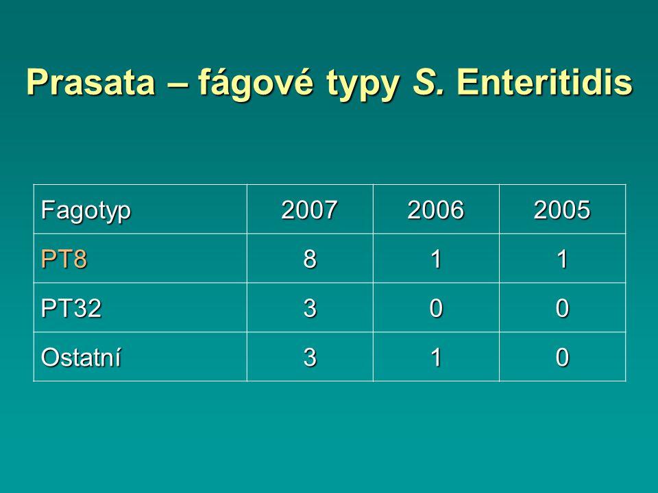 Prasata – fágové typy S. Enteritidis Fagotyp200720062005 PT8811 PT32300 Ostatní310