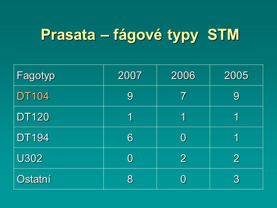 Prasata – fágové typy STM Fagotyp200720062005 DT104979 DT120111 DT194601 U302022 Ostatní803