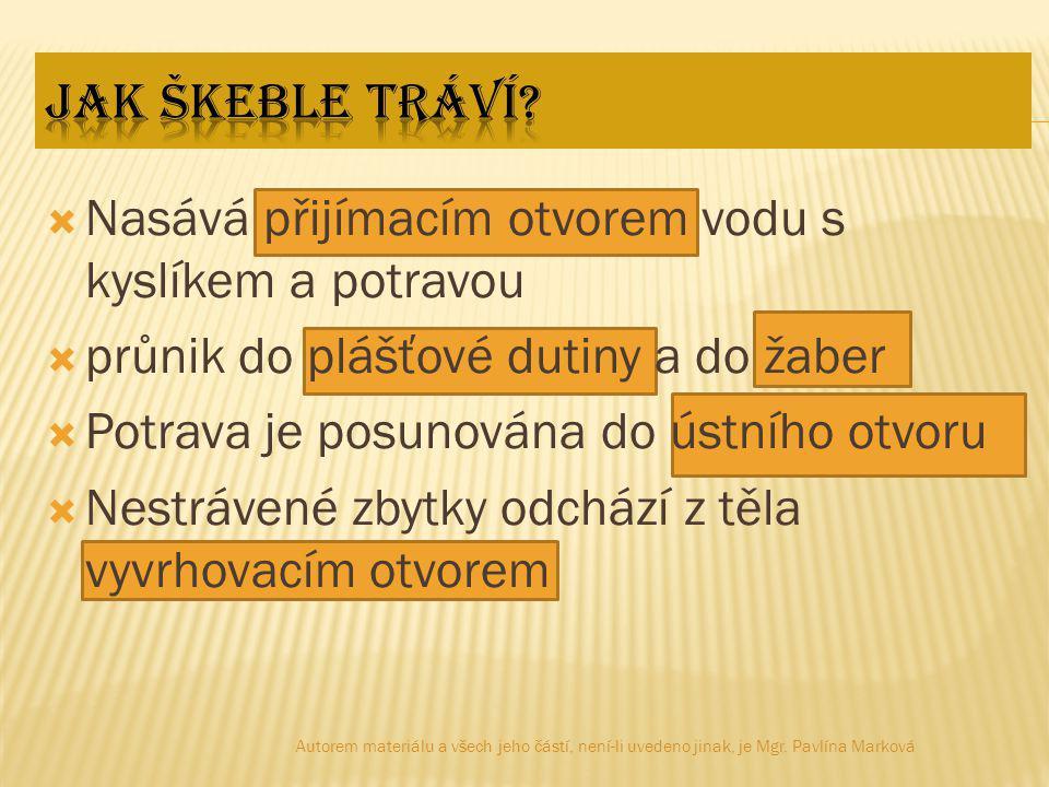  Obr.4: [cit. 2012-01-14].