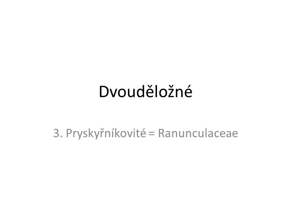 Dvouděložné 3. Pryskyřníkovité = Ranunculaceae