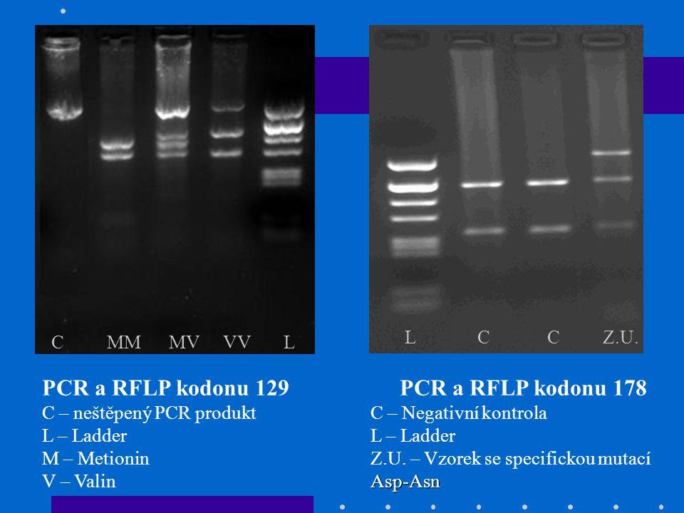 PCR a RFLP kodonu 129 C – neštěpený PCR produkt L – Ladder M – Metionin V – Valin C MM MV VV L PCR a RFLP kodonu 178 C – Negativní kontrola L – Ladder Asp-Asn Z.U.