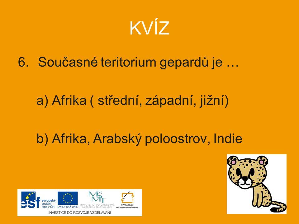 KVÍZ 6.Současné teritorium gepardů je … a) Afrika ( střední, západní, jižní) b) Afrika, Arabský poloostrov, Indie