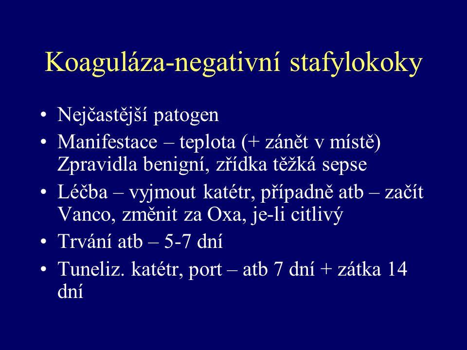 Koaguláza-negativní stafylokoky Nejčastější patogen Manifestace – teplota (+ zánět v místě) Zpravidla benigní, zřídka těžká sepse Léčba – vyjmout katé