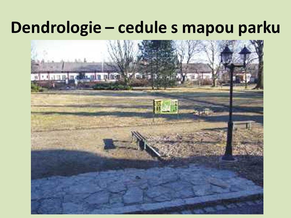Dendrologie – cedule s mapou parku