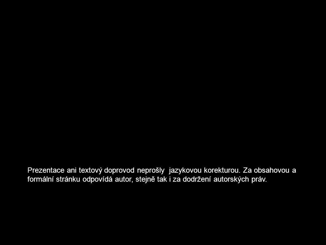 6. Mlýnská kolonáda 1881 J. Zítka 5 pramenných váz 124 sloupů 12 alegorických soch 17 18