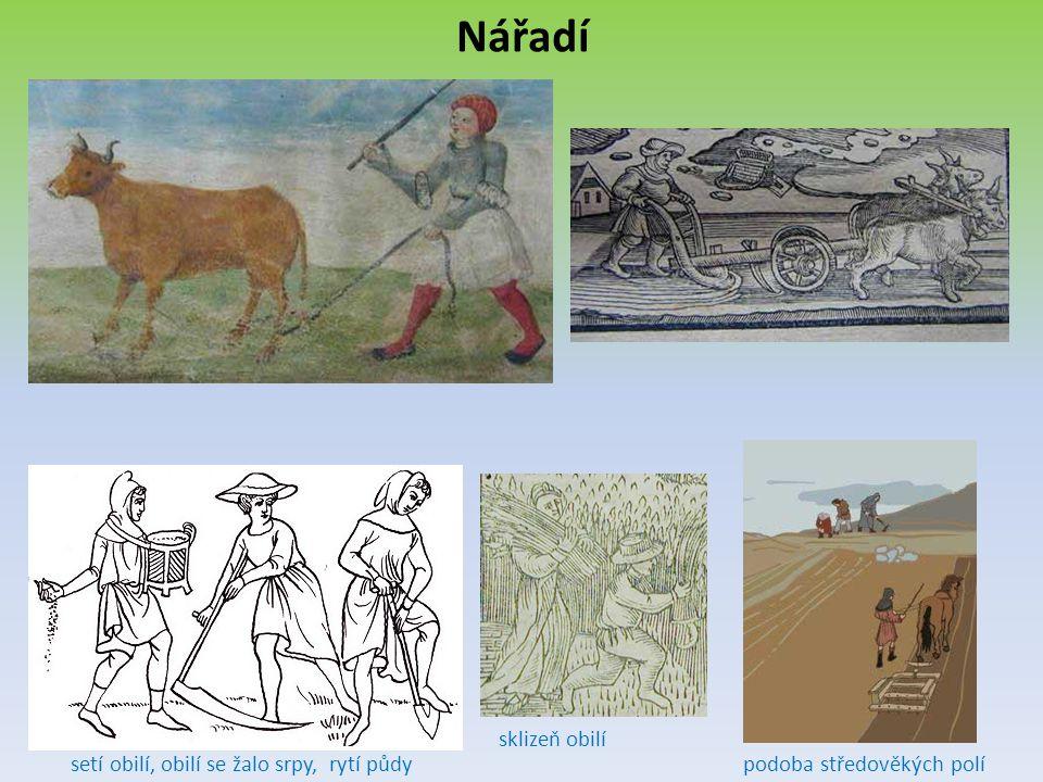Nářadí setí obilí, obilí se žalo srpy, rytí půdy sklizeň obilí podoba středověkých polí