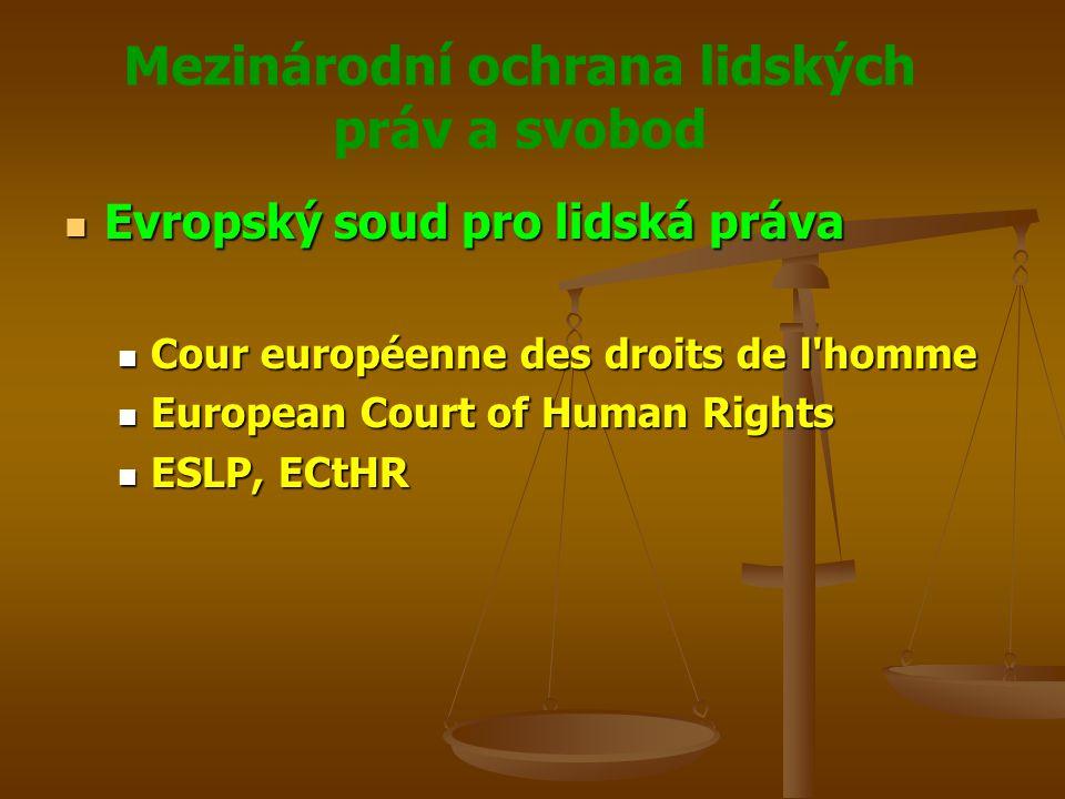 Mezinárodní ochrana lidských práv a svobod Evropský soud pro lidská práva Evropský soud pro lidská práva Cour européenne des droits de l homme Cour européenne des droits de l homme European Court of Human Rights European Court of Human Rights ESLP, ECtHR ESLP, ECtHR