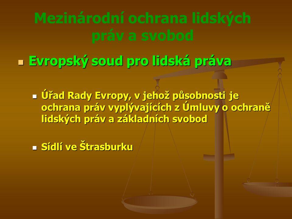 Mezinárodní ochrana lidských práv a svobod Evropský soud pro lidská práva Evropský soud pro lidská práva Úřad Rady Evropy, v jehož působnosti je ochrana práv vyplývajících z Úmluvy o ochraně lidských práv a základních svobod Úřad Rady Evropy, v jehož působnosti je ochrana práv vyplývajících z Úmluvy o ochraně lidských práv a základních svobod Sídlí ve Štrasburku Sídlí ve Štrasburku