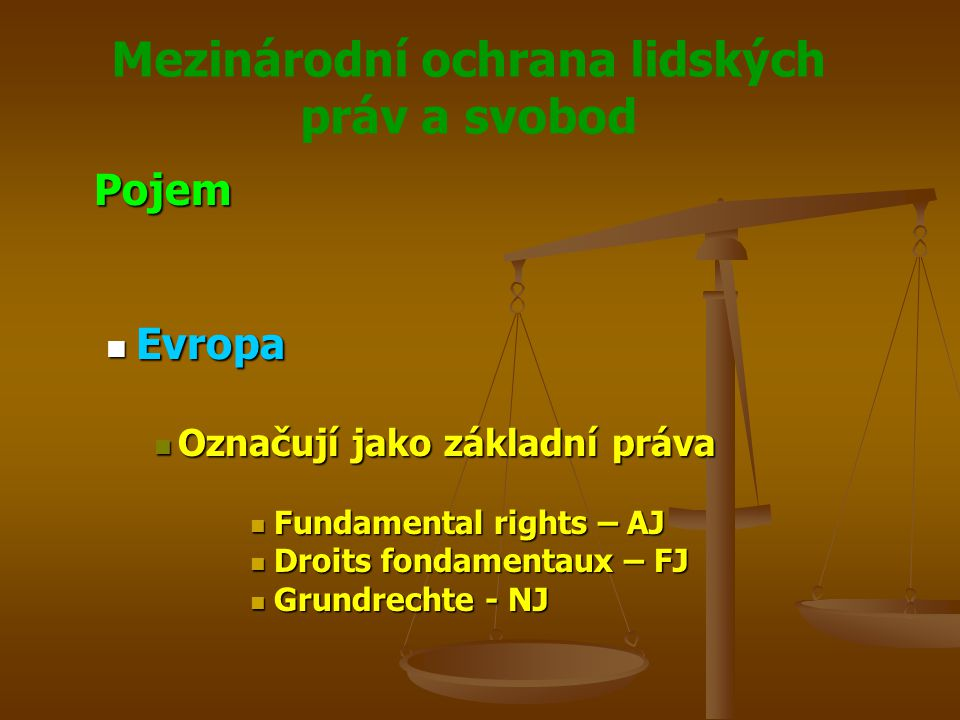 Mezinárodní ochrana lidských práv a svobod Pojem Evropa Evropa Označují jako základní práva Označují jako základní práva Fundamental rights – AJ Fundamental rights – AJ Droits fondamentaux – FJ Droits fondamentaux – FJ Grundrechte - NJ Grundrechte - NJ