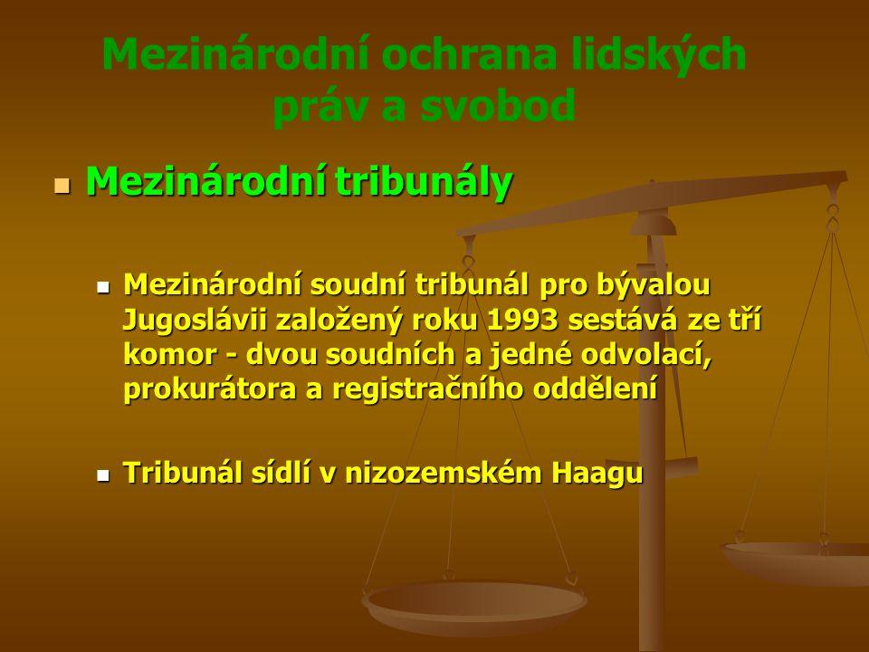 Mezinárodní ochrana lidských práv a svobod Mezinárodní tribunály Mezinárodní tribunály Mezinárodní soudní tribunál pro bývalou Jugoslávii založený roku 1993 sestává ze tří komor - dvou soudních a jedné odvolací, prokurátora a registračního oddělení Mezinárodní soudní tribunál pro bývalou Jugoslávii založený roku 1993 sestává ze tří komor - dvou soudních a jedné odvolací, prokurátora a registračního oddělení Tribunál sídlí v nizozemském Haagu Tribunál sídlí v nizozemském Haagu