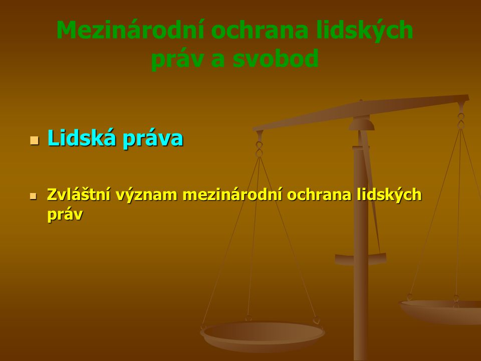 Mezinárodní ochrana lidských práv a svobod Mezinárodní úmluvy Mezinárodní úmluvy Všeobecné - Mezinárodní pakt o občanských a politických právech Všeobecné - Mezinárodní pakt o občanských a politických právech Zvláštní – partikulární – Úmluva proti mučení, Úmluva o právech dítěte Zvláštní – partikulární – Úmluva proti mučení, Úmluva o právech dítěte