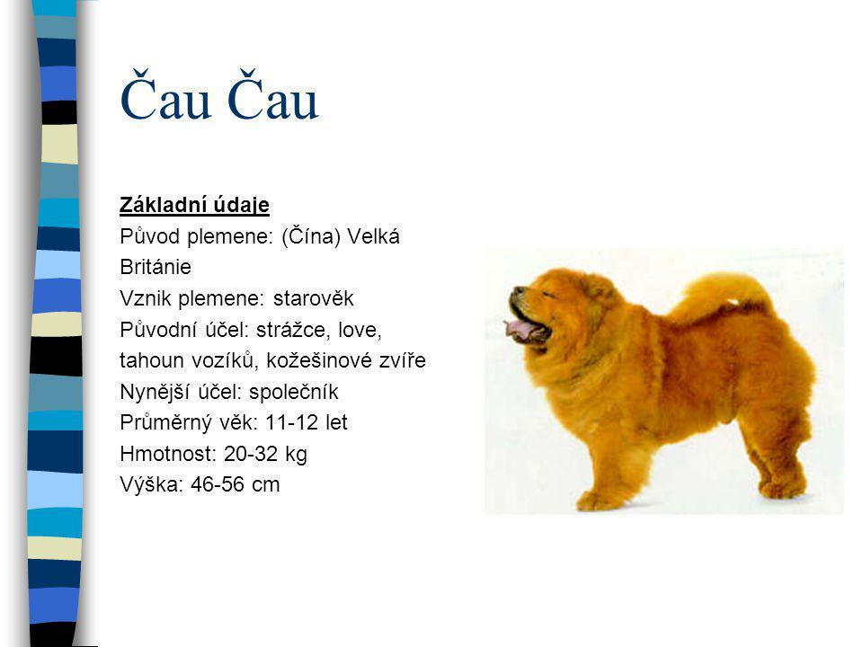 Aljašský malamut Základní údaje Původ plemene: USA Vznik plemene: starověk Původní účel: sáňový pes, lovec Nynější účel: společník,sáňový pes, účastník závodů Průměrný věk: 12 let Hmotnost: 34-39 kg Výška: 58-64 cm
