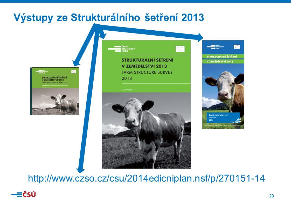 20 Výstupy ze Strukturálního šetření 2013 http://www.czso.cz/csu/2014edicniplan.nsf/p/270151-14