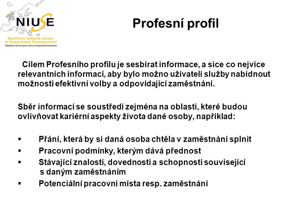Profesní profil Cílem Profesního profilu je sesbírat informace, a sice co nejvíce relevantních informací, aby bylo možno uživateli služby nabídnout mo