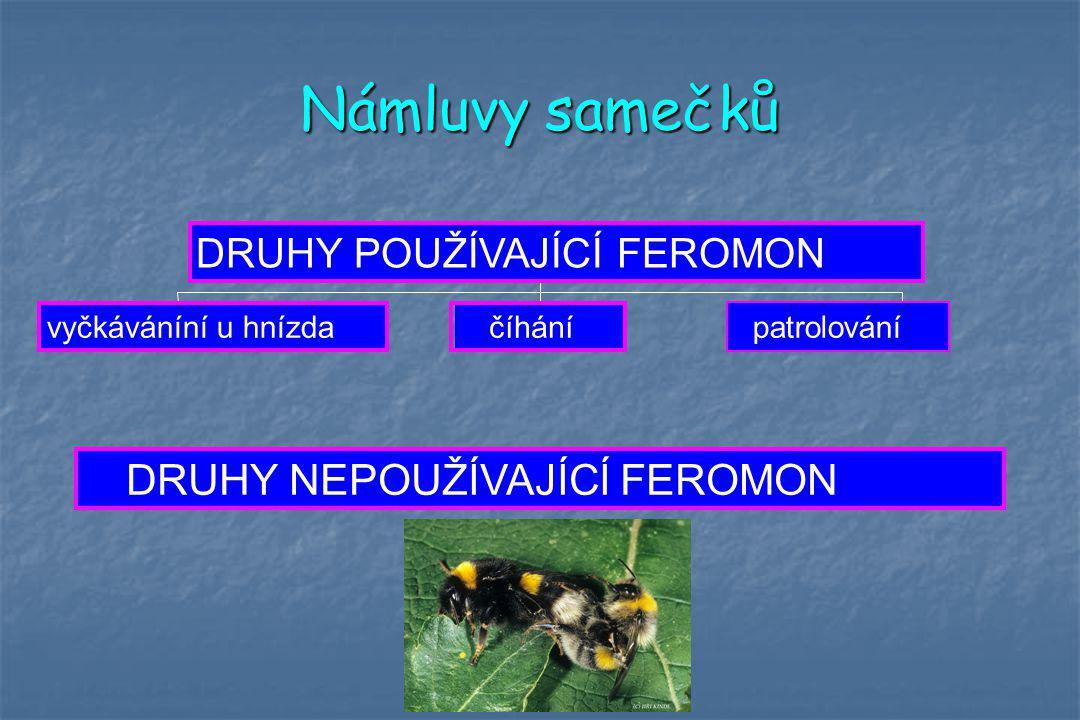 Námluvy samečků vyčkáváníní u hnízdačíhánípatrolování DRUHY POUŽÍVAJÍCÍ FEROMON DRUHY NEPOUŽÍVAJÍCÍ FEROMON