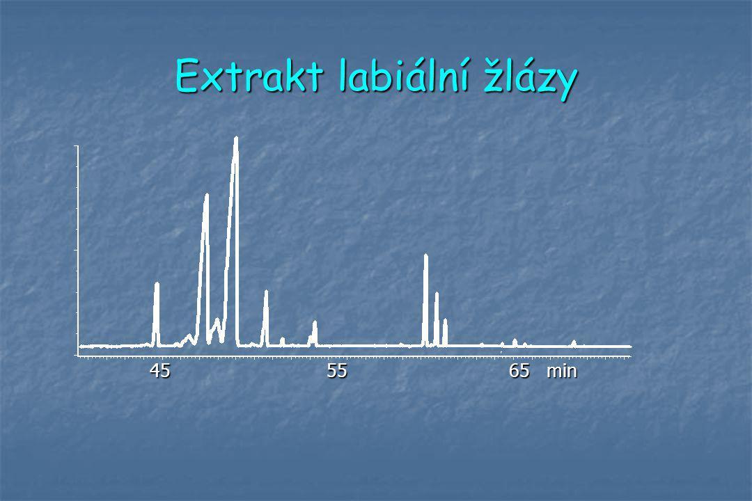 Extrakt labiální žlázy 45 55 65 min