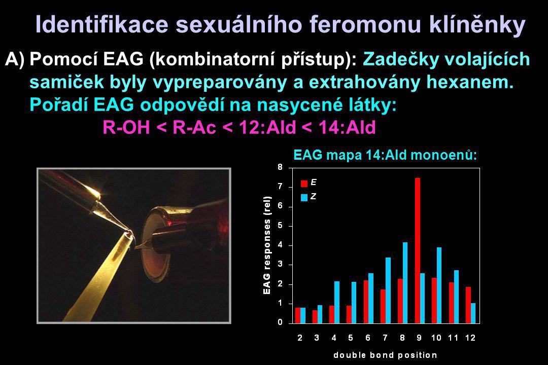 A)Pomocí EAG (kombinatorní přístup): Zadečky volajících samiček byly vypreparovány a extrahovány hexanem. Pořadí EAG odpovědí na nasycené látky: R-OH