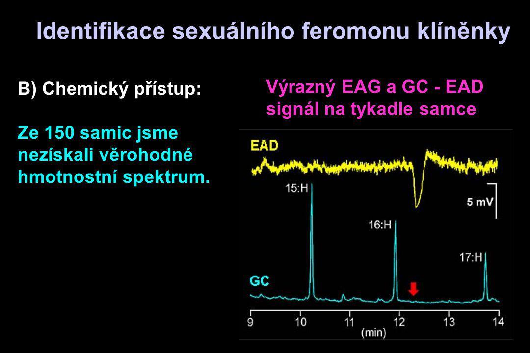 B) Chemický přístup: Ze 150 samic jsme nezískali věrohodné hmotnostní spektrum. Výrazný EAG a GC - EAD signál na tykadle samce Identifikace sexuálního